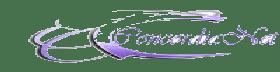 ConcordiaNet..Desenvolvimento e Hospedagens Web